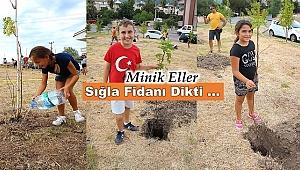 Marmaris'te minikler sığla fidanlarını toprakla buluşturdu