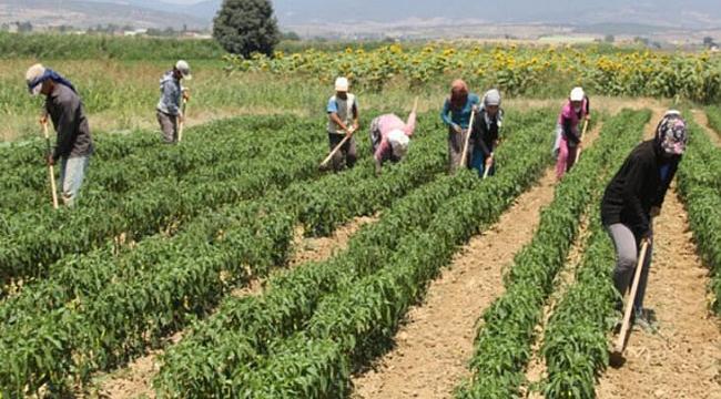 Bakanlıktan Tarım işçilerine korona virüs tedbiri