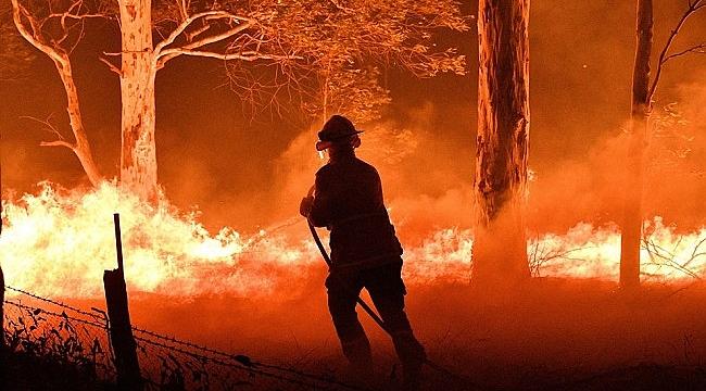 İklim Değişikli Orman Yangın Sezonlarının Süresini ve Riskini Arttırıyor