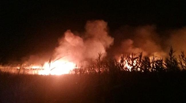 Kuşların yumurtlama döneminde Göksu Deltasında yangın çıktı