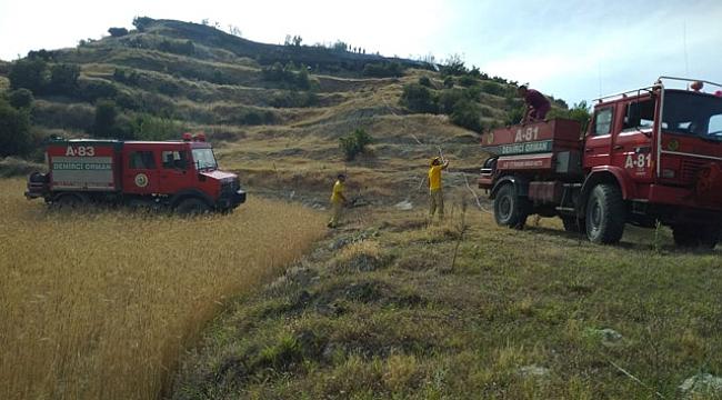 Arpa tarlasında başlayan yangın ağaçlandırma sahasına sıçradı