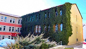 Bitkililerle Mantolanan Kamu Binası