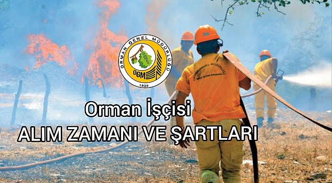 Orman Genel Müdürlüğü'nün işçi alımına ilişkin ilanı yayımlandı