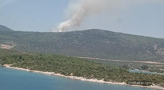 İzmir'de makilik alanda çıkan orman yangını kontrol altında