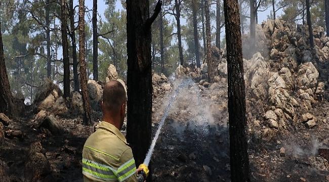 Mersin'deki orman yangınında soğutma çalışmaları devam ediyor