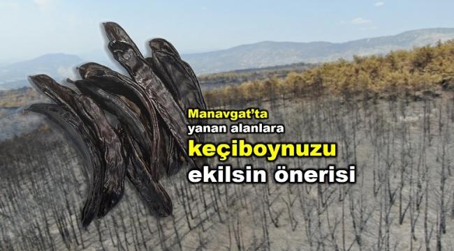 """""""Manavgat'ta tıbbi aromatik bitki bandı talebi"""""""